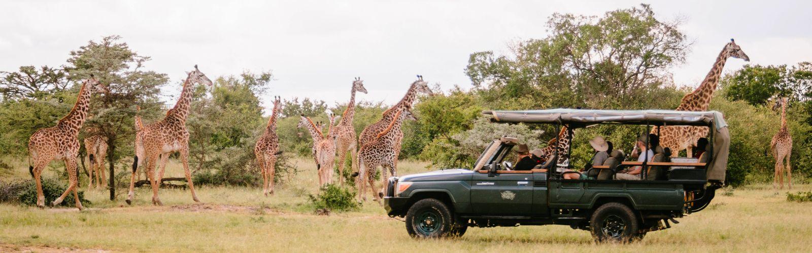 Safari\'s in Tanzania
