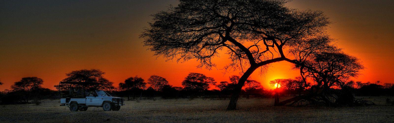 Safari en Afrika