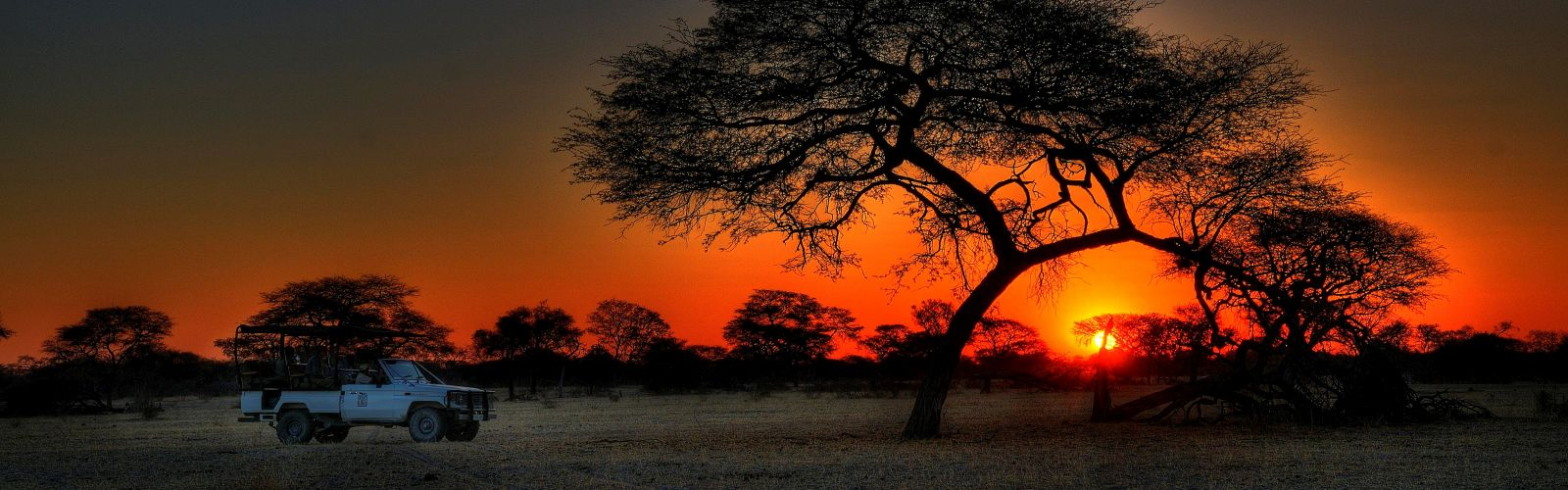 Safari\'s in Zuid-Afrika