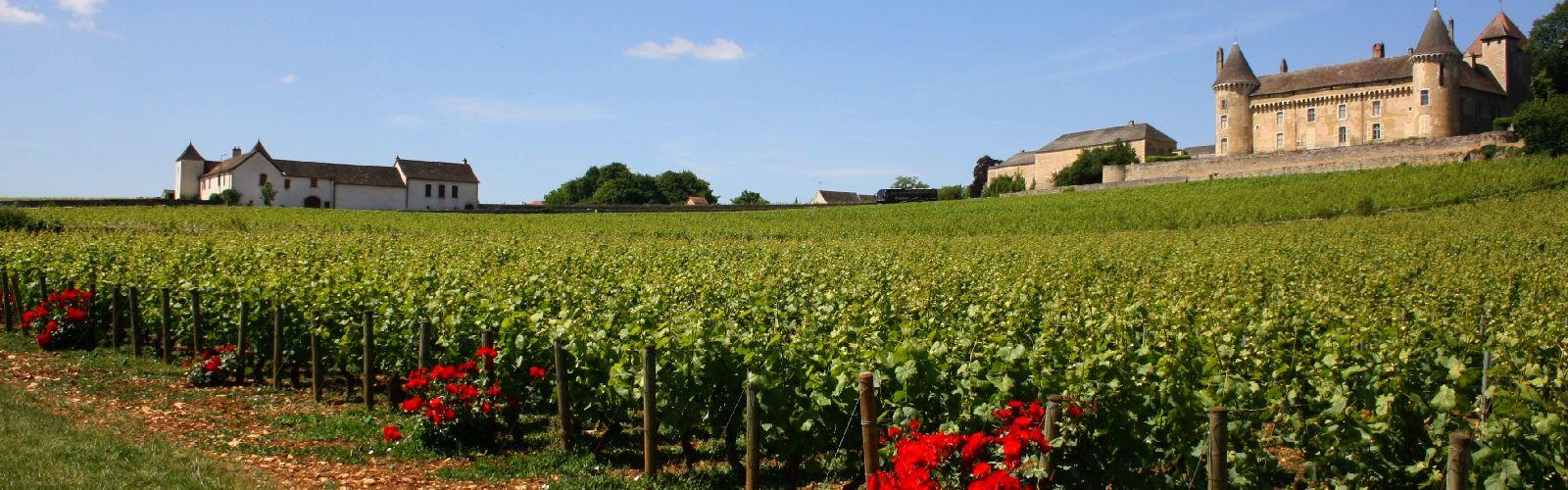 Stedenreis Bourgogne
